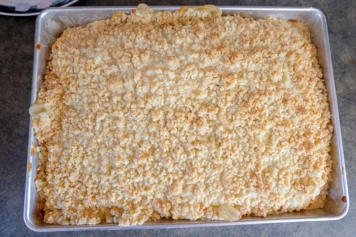 baked vanilla pudding cake with crumbs in silver baking pan