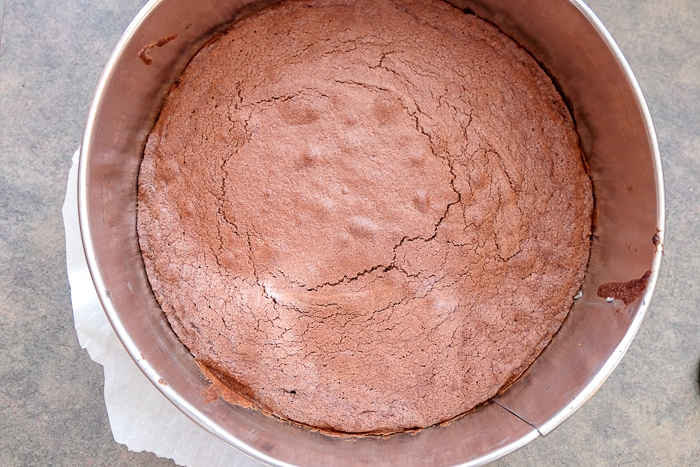 cooked swedish chocolate cake in round springform pan on counter